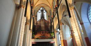 orgel-snk